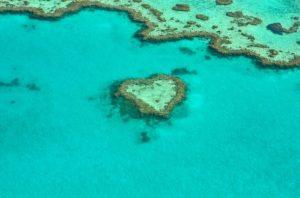ハミルトン島旅行の無料オーダーメイド見積りはハミルトン専門のグラージュ