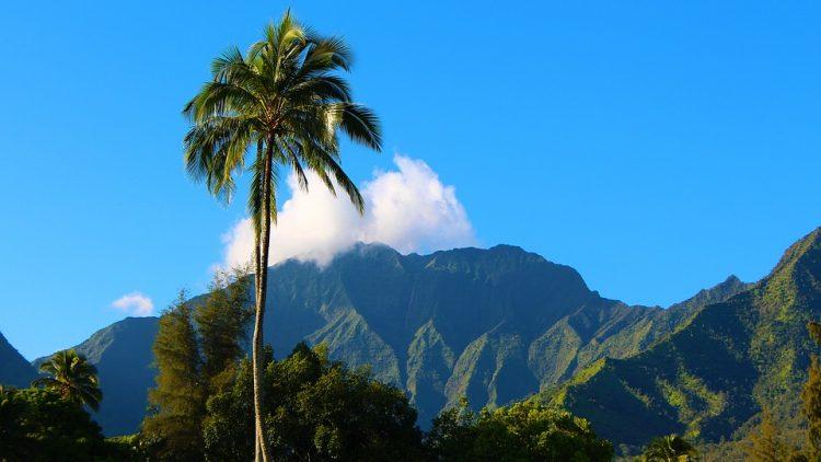 カウアイ島新婚旅行、カウアイ島ハネムーン、カウアイ島おすすめ