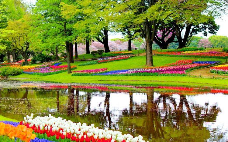 グラマラスヴォヤージュお勧め、世界一綺麗な花の公演で世界のインスタを投稿しよう! Keukenhof キューケンホフのチューリップを観に行く旅!、オランダ旅行、チューリップ旅行の行き方,予算,費用は無料見積もりに自信の名古屋のオーダーメイド専門旅行会社グラージュへ