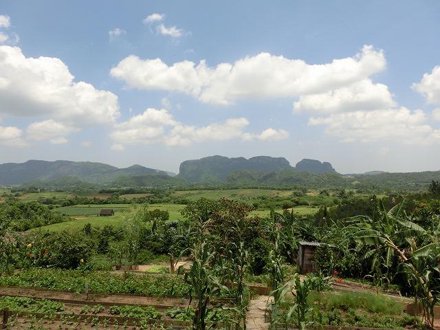 ピニャーレスは間違いなくキューバで最高の自然の絶景
