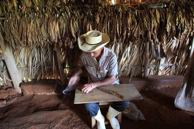 シガーで世界一値段が高い超高級キューバ産の葉巻